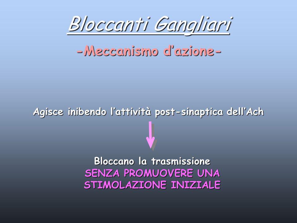 Bloccanti Gangliari -Meccanismo dazione- Agisce inibendo lattività post-sinaptica dellAch Bloccano la trasmissione SENZA PROMUOVERE UNA STIMOLAZIONE I