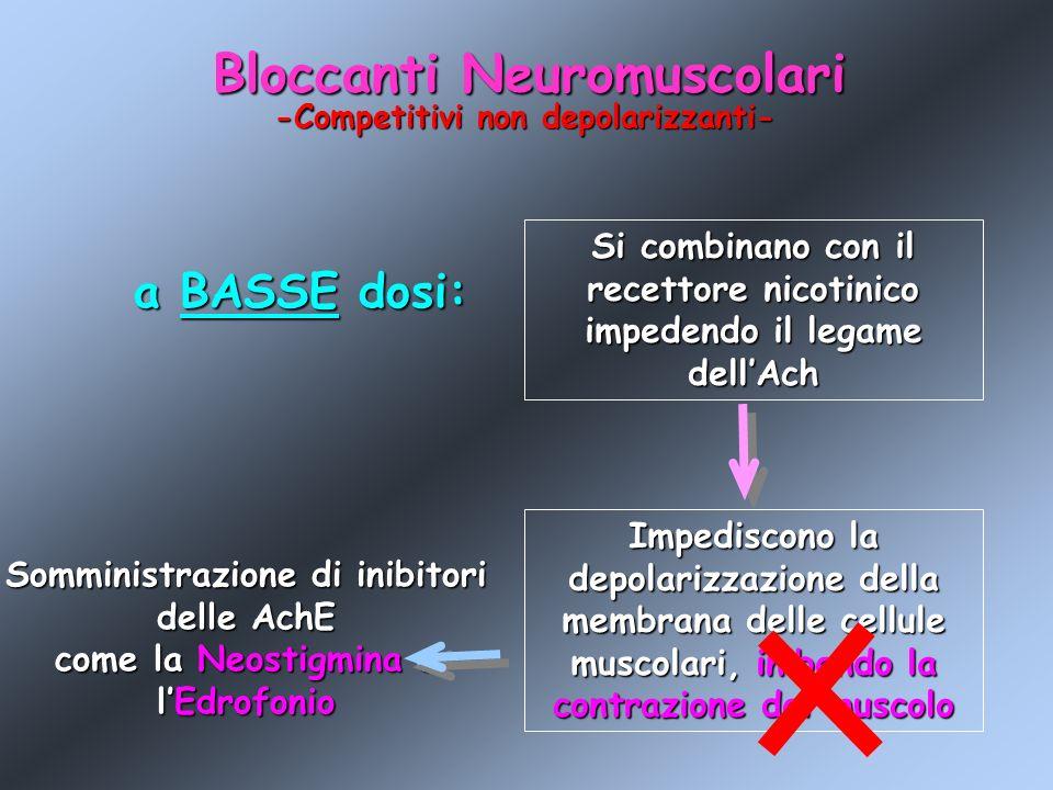 Bloccanti Neuromuscolari -Competitivi non depolarizzanti- a BASSE dosi: Si combinano con il recettore nicotinico impedendo il legame dellAch Impedisco