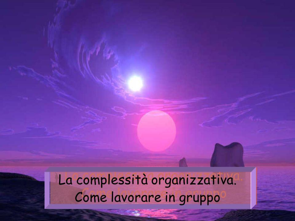 La complessità organizzativa.Come lavorare in gruppo La complessità organizzativa.