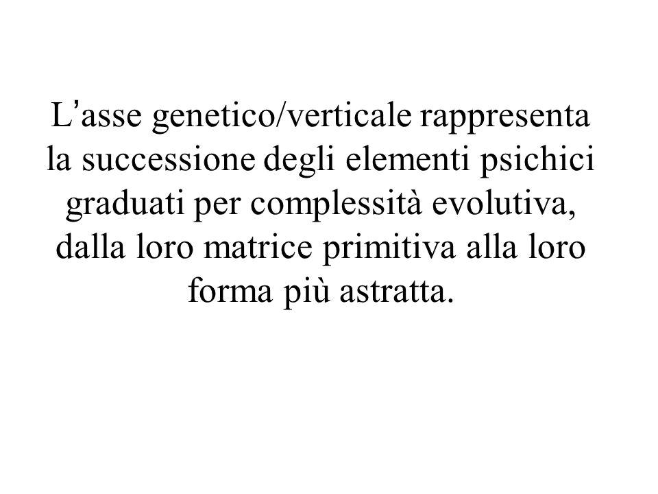 Lasse genetico/verticale rappresenta la successione degli elementi psichici graduati per complessità evolutiva, dalla loro matrice primitiva alla loro