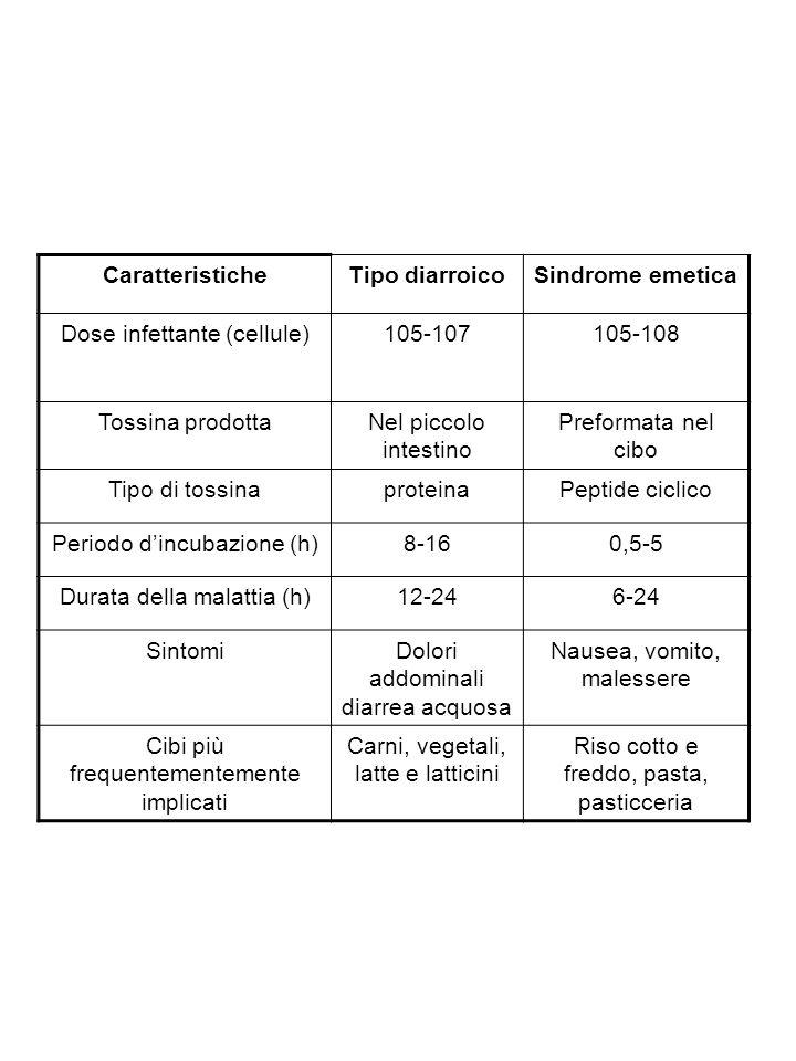 CaratteristicheTipo diarroicoSindrome emetica Dose infettante (cellule)105-107105-108 Tossina prodottaNel piccolo intestino Preformata nel cibo Tipo d