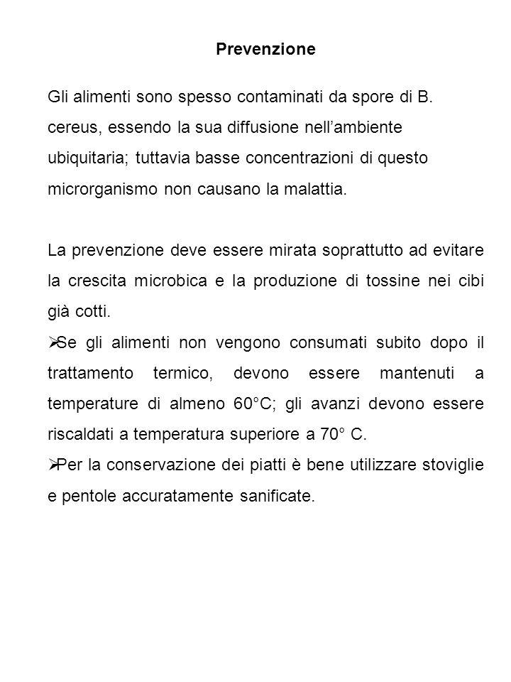 Prevenzione Gli alimenti sono spesso contaminati da spore di B. cereus, essendo la sua diffusione nellambiente ubiquitaria; tuttavia basse concentrazi