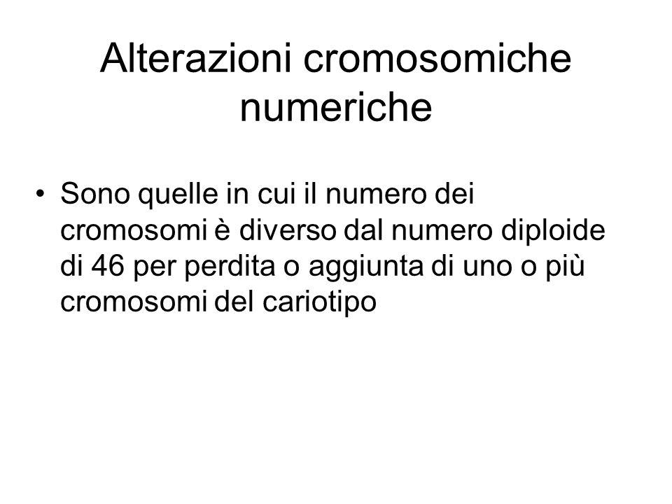 Alterazioni cromosomiche numeriche Sono quelle in cui il numero dei cromosomi è diverso dal numero diploide di 46 per perdita o aggiunta di uno o più