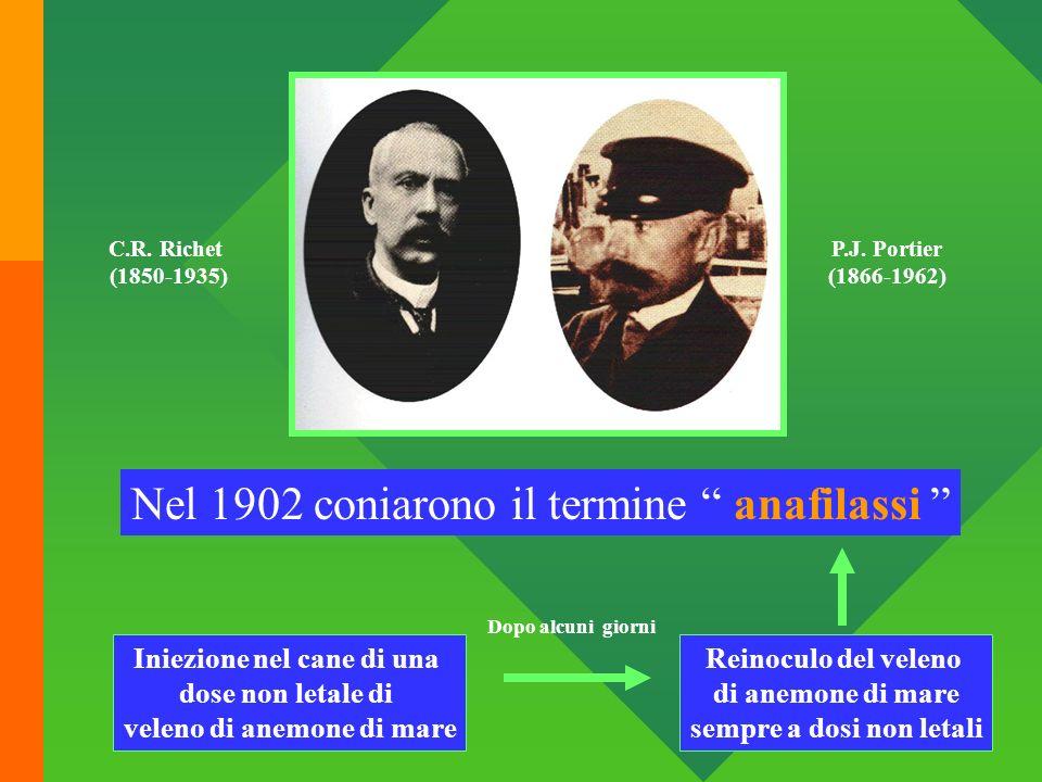 C.R. Richet (1850-1935) P.J. Portier (1866-1962) Nel 1902 coniarono il termine anafilassi Iniezione nel cane di una dose non letale di veleno di anemo