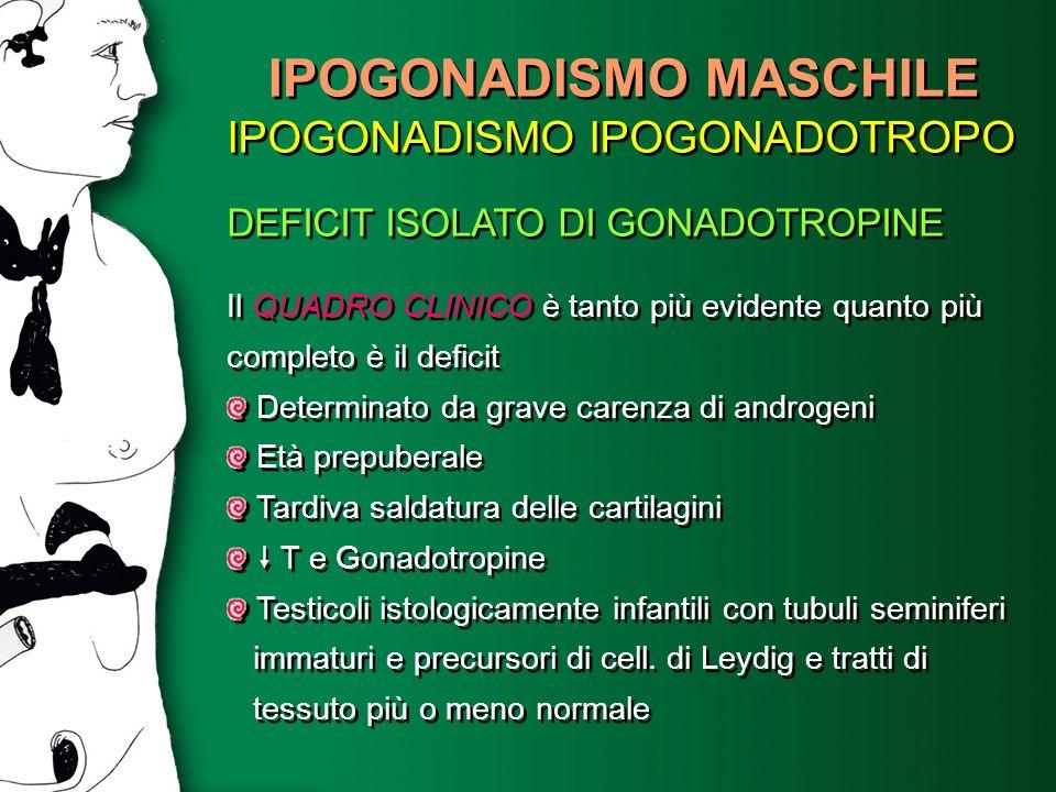 IPOGONADISMO MASCHILE IPOGONADISMO IPOGONADOTROPO DEFICIT ISOLATO DI GONADOTROPINE Il QUADRO CLINICO è tanto più evidente quanto più completo è il def