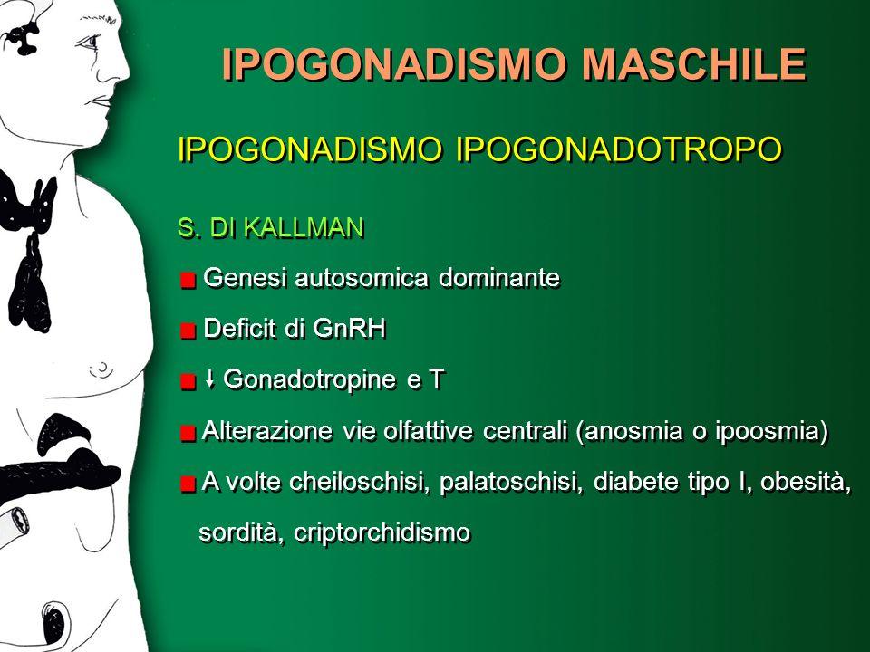 IPOGONADISMO MASCHILE IPOGONADISMO IPOGONADOTROPO S. DI KALLMAN Genesi autosomica dominante Deficit di GnRH Gonadotropine e T Alterazione vie olfattiv