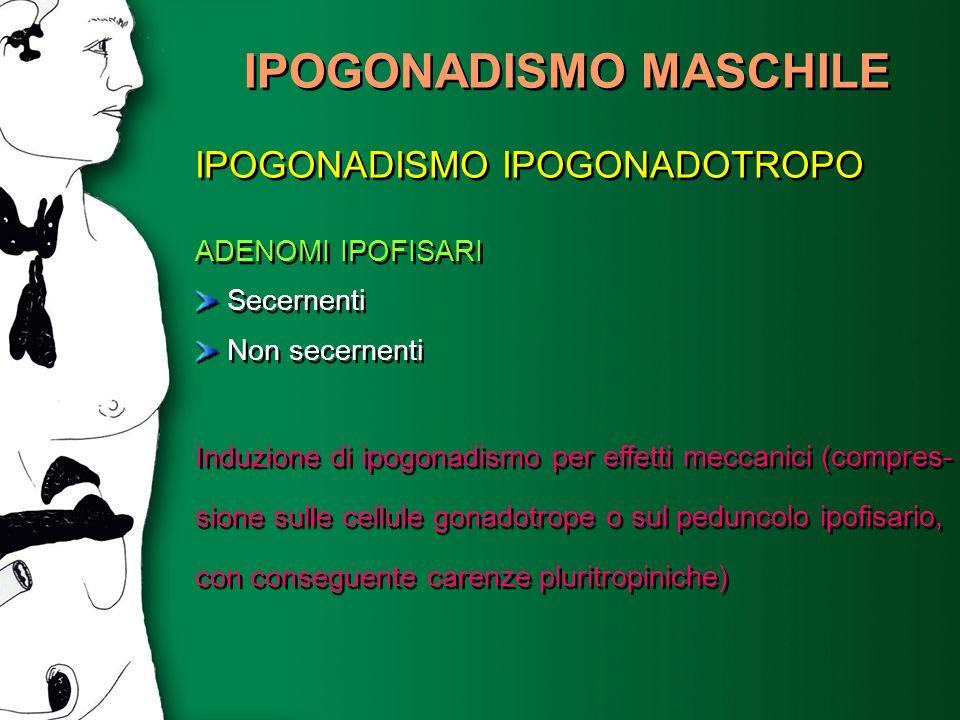 IPOGONADISMO MASCHILE IPOGONADISMO IPOGONADOTROPO ADENOMI IPOFISARI Secernenti Non secernenti Induzione di ipogonadismo per effetti meccanici (compres