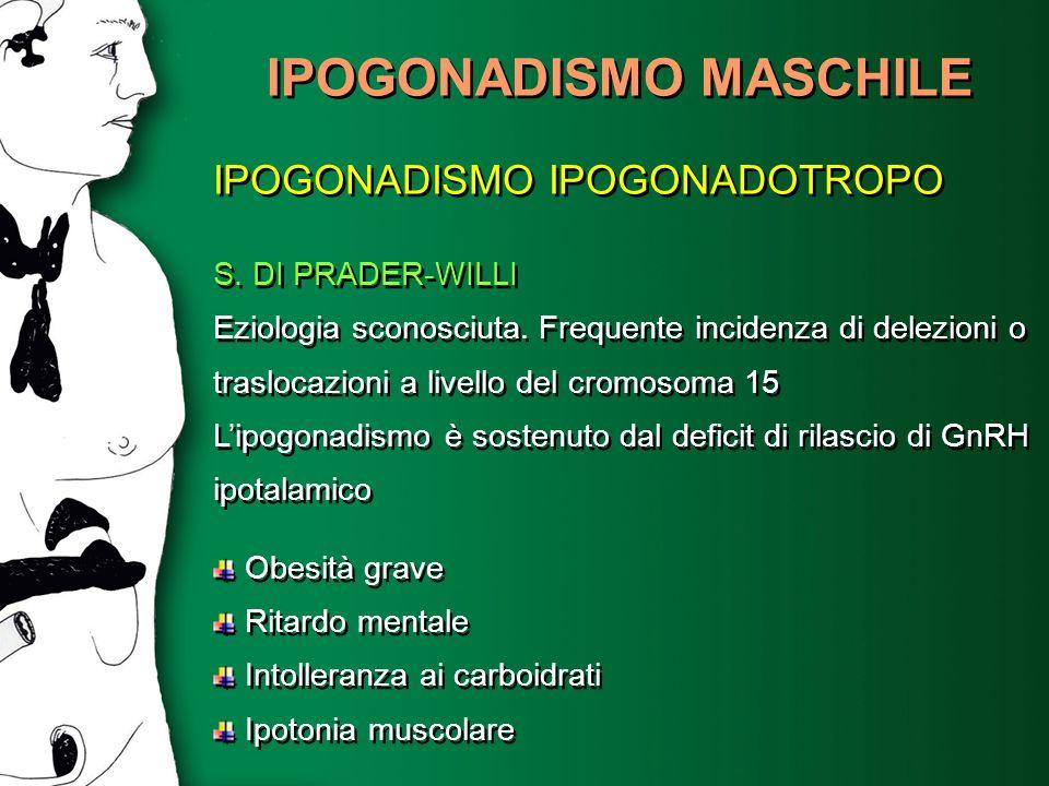 IPOGONADISMO MASCHILE IPOGONADISMO IPOGONADOTROPO S. DI PRADER-WILLI Eziologia sconosciuta. Frequente incidenza di delezioni o traslocazioni a livello