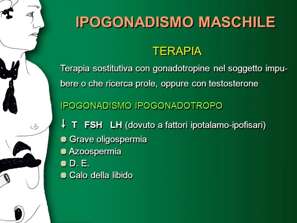 IPOGONADISMO MASCHILE TERAPIA Terapia sostitutiva con gonadotropine nel soggetto impu- bere o che ricerca prole, oppure con testosterone IPOGONADISMO