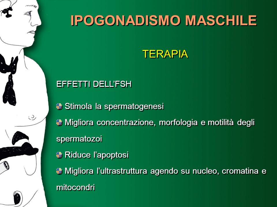 IPOGONADISMO MASCHILE TERAPIA EFFETTI DELLFSH Stimola la spermatogenesi Migliora concentrazione, morfologia e motilità degli spermatozoi Riduce lapopt
