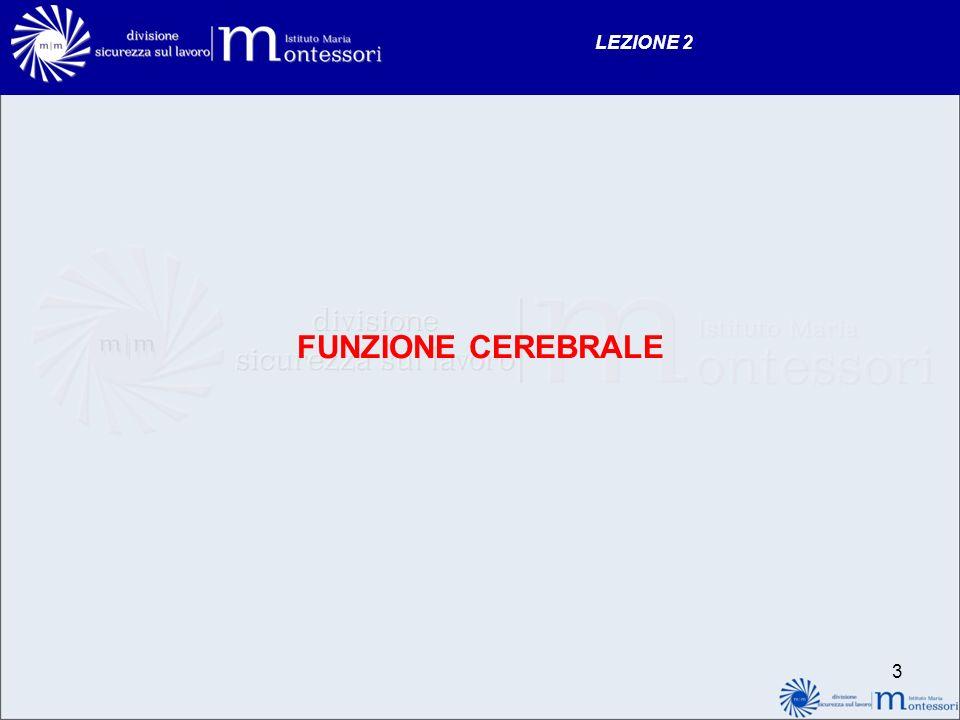 2 LEZIONE 2 VALUTAZIONE DELLE FUNZIONI VITALI - funzione cerebrale - funzione respiratoria - funzione cardiaca