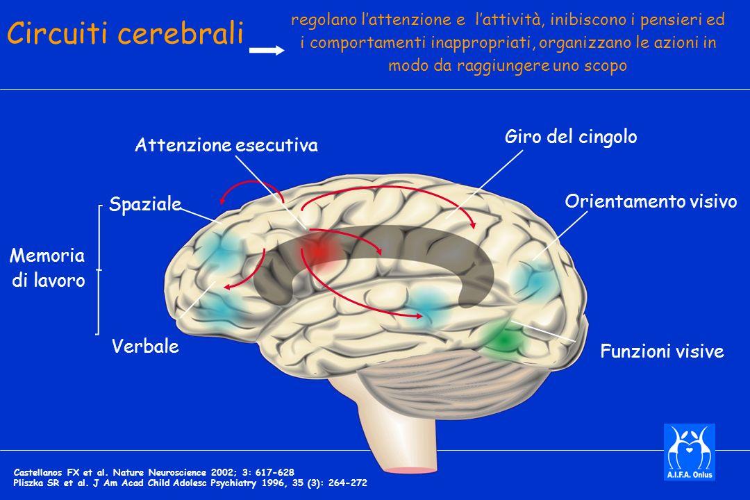 Orientamento visivo Funzioni visive Spaziale Verbale Giro del cingolo Attenzione esecutiva Memoria di lavoro regolano lattenzione e lattività, inibiscono i pensieri ed i comportamenti inappropriati, organizzano le azioni in modo da raggiungere uno scopo Circuiti cerebrali Castellanos FX et al.