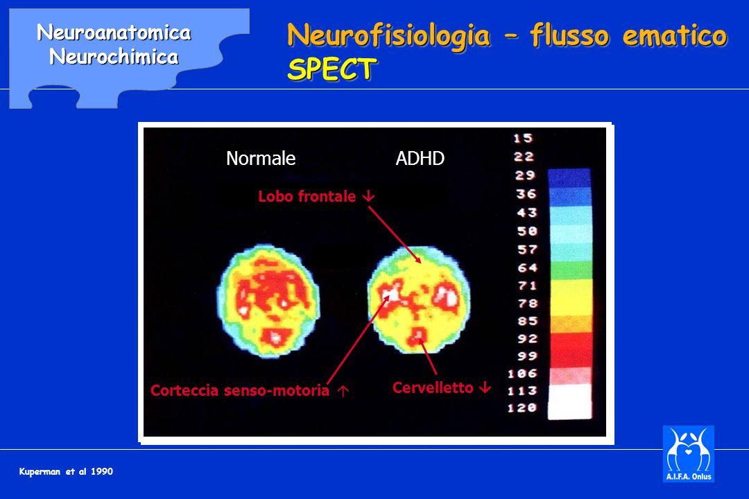 Neurofisiologia – flusso ematico SPECT Lobo frontale Cervelletto Corteccia senso-motoria NormaleADHD Kuperman et al 1990 NeuroanatomicaNeurochimica