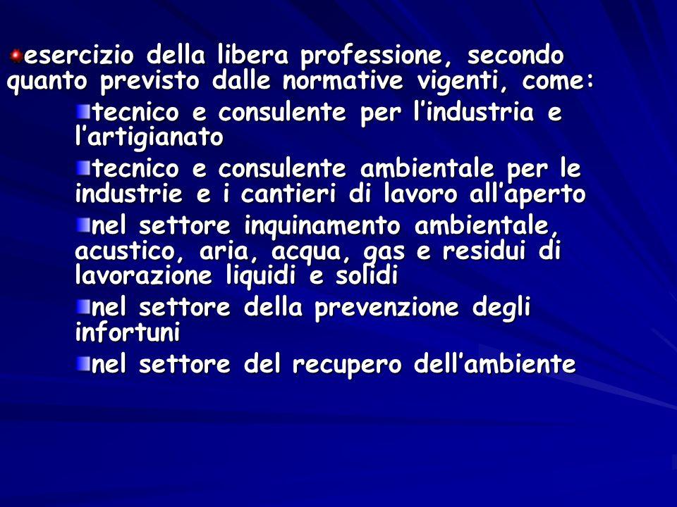 esercizio della libera professione, secondo quanto previsto dalle normative vigenti, come: tecnico e consulente per lindustria e lartigianato tecnico