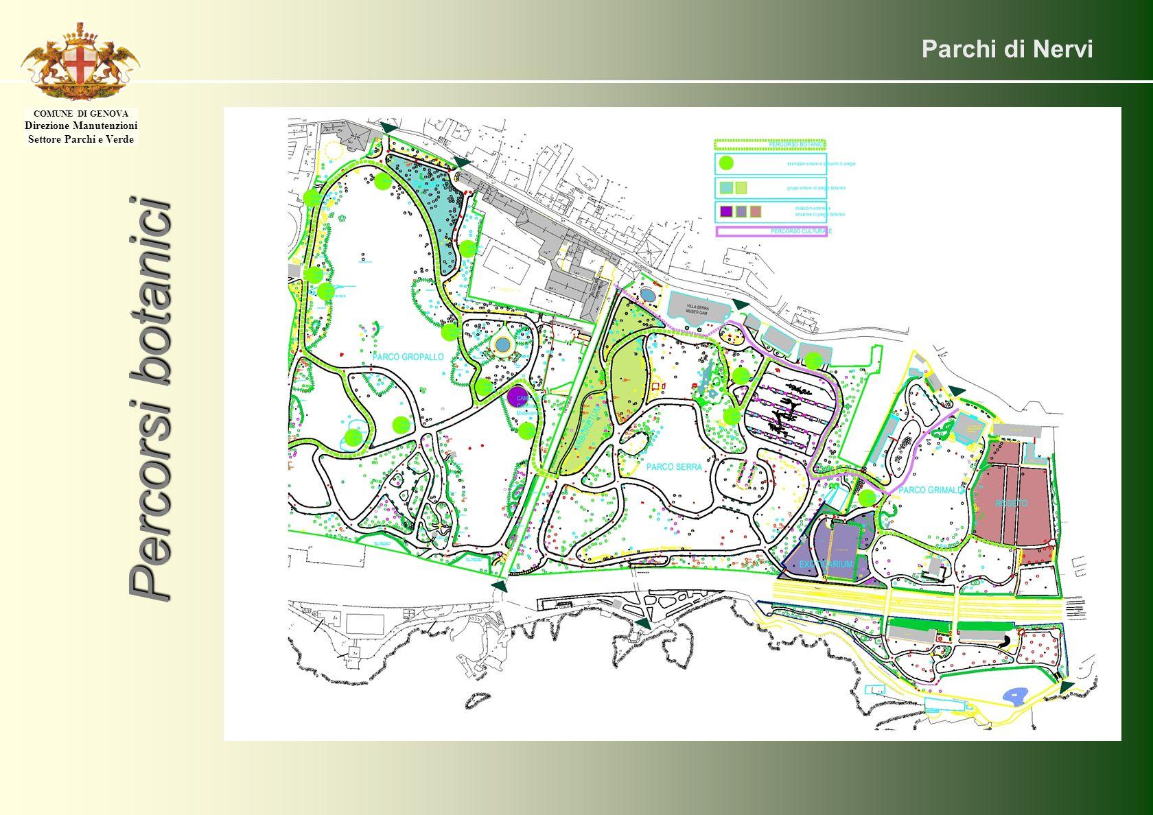 Parchi di Nervi Percorsi botanici COMUNE DI GENOVA Direzione Manutenzioni Settore Parchi e Verde