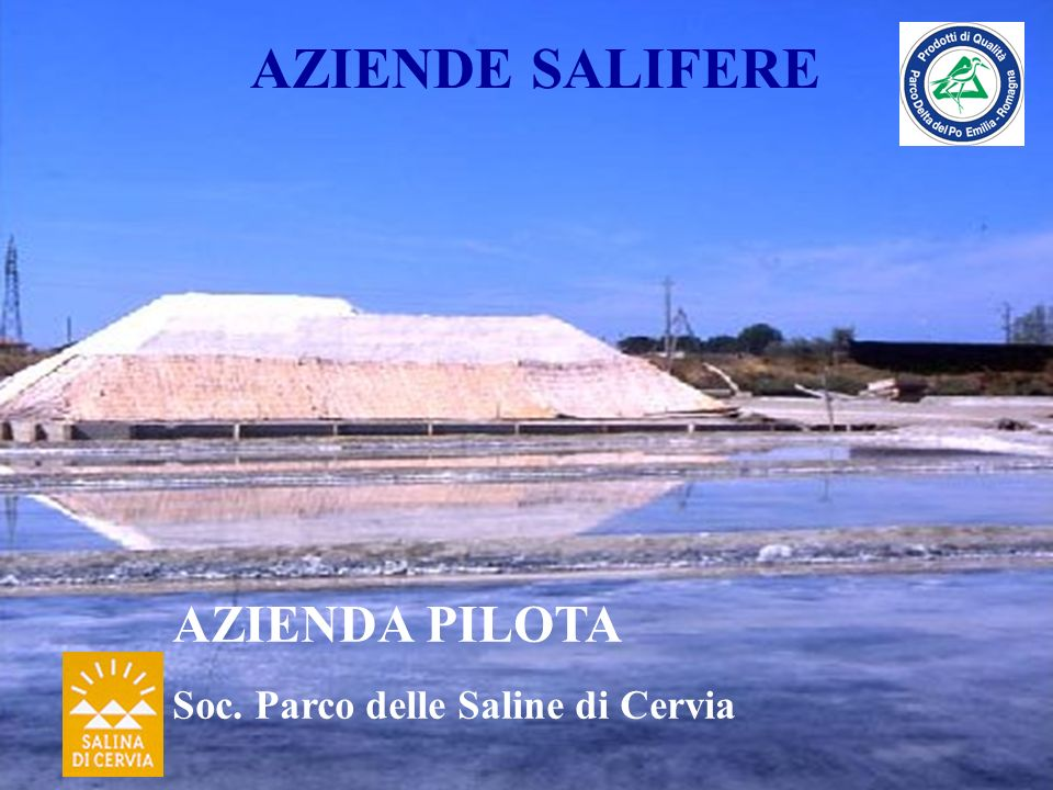 AZIENDE SALIFERE AZIENDA PILOTA Soc. Parco delle Saline di Cervia