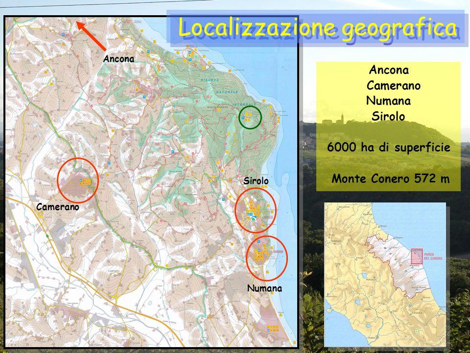 Ancona Camerano Numana Sirolo 6000 ha di superficie Monte Conero 572 m Localizzazione geografica Camerano Sirolo Numana Ancona
