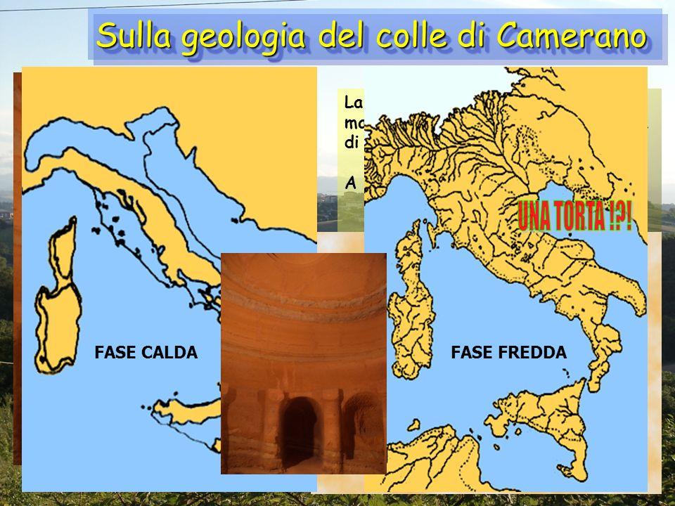 Sulla geologia del colle di Camerano La collina ha una struttura geologica marnosa-arenacea, con unalternanza di strati di argilla e arenaria A che co