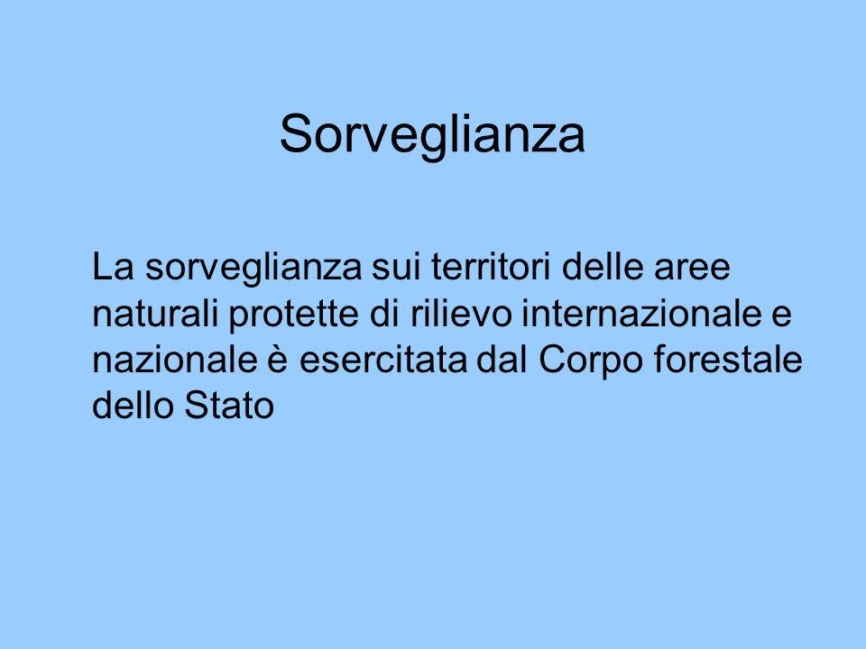 Sorveglianza La sorveglianza sui territori delle aree naturali protette di rilievo internazionale e nazionale è esercitata dal Corpo forestale dello S