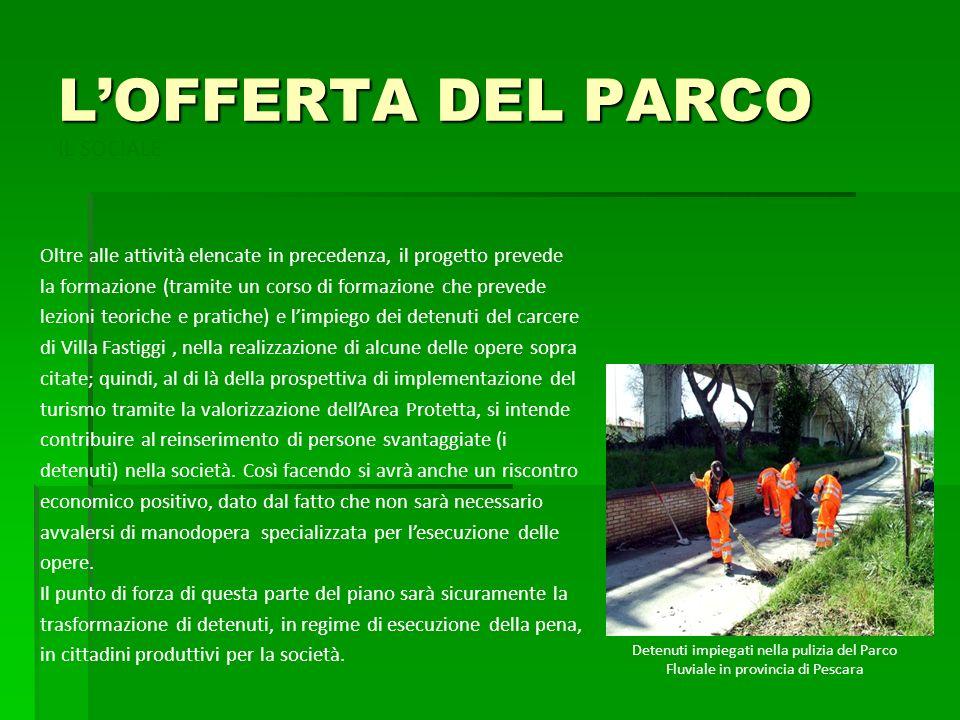 LOFFERTA DEL PARCO Oltre alle attività elencate in precedenza, il progetto prevede la formazione (tramite un corso di formazione che prevede lezioni t