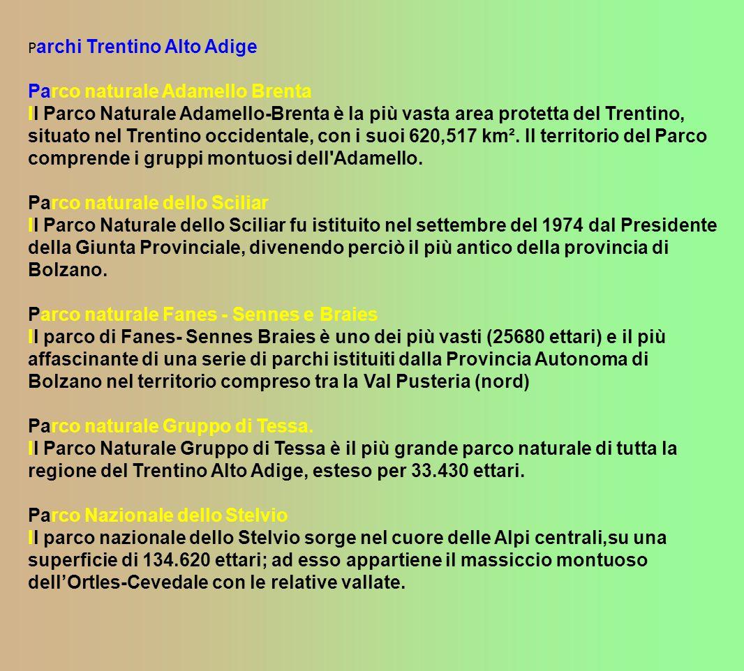 P archi Trentino Alto Adige Parco naturale Adamello Brenta Il Parco Naturale Adamello-Brenta è la più vasta area protetta del Trentino, situato nel Trentino occidentale, con i suoi 620,517 km².
