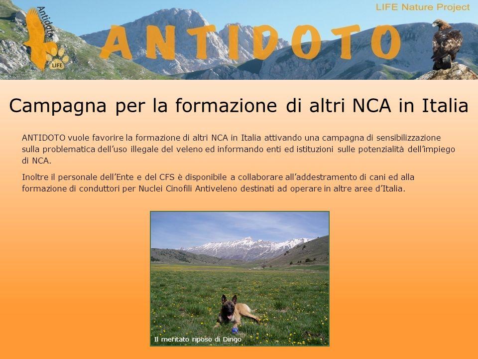 Campagna per la formazione di altri NCA in Italia ANTIDOTO vuole favorire la formazione di altri NCA in Italia attivando una campagna di sensibilizzazione sulla problematica delluso illegale del veleno ed informando enti ed istituzioni sulle potenzialità dellimpiego di NCA.