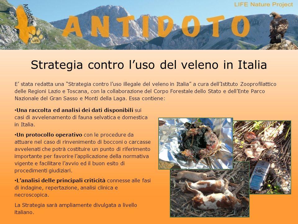 Strategia contro luso del veleno in Italia E stata redatta una Strategia contro luso illegale del veleno in Italia a cura dellIstituto Zooprofilattico delle Regioni Lazio e Toscana, con la collaborazione del Corpo Forestale dello Stato e dellEnte Parco Nazionale del Gran Sasso e Monti della Laga.