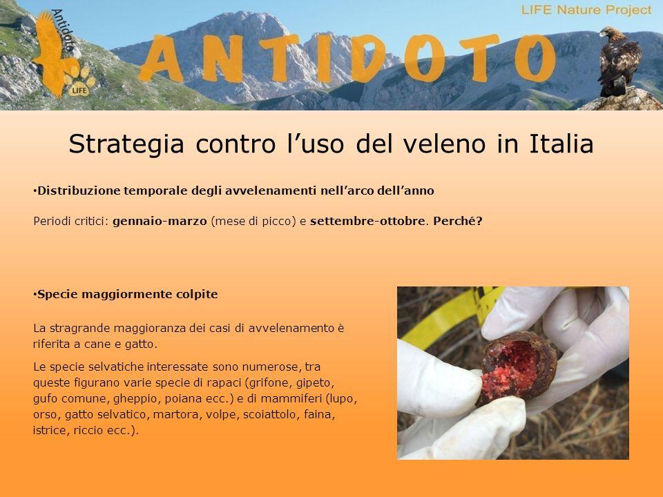 Strategia contro luso del veleno in Italia Distribuzione temporale degli avvelenamenti nellarco dellanno Periodi critici: gennaio-marzo (mese di picco) e settembre-ottobre.