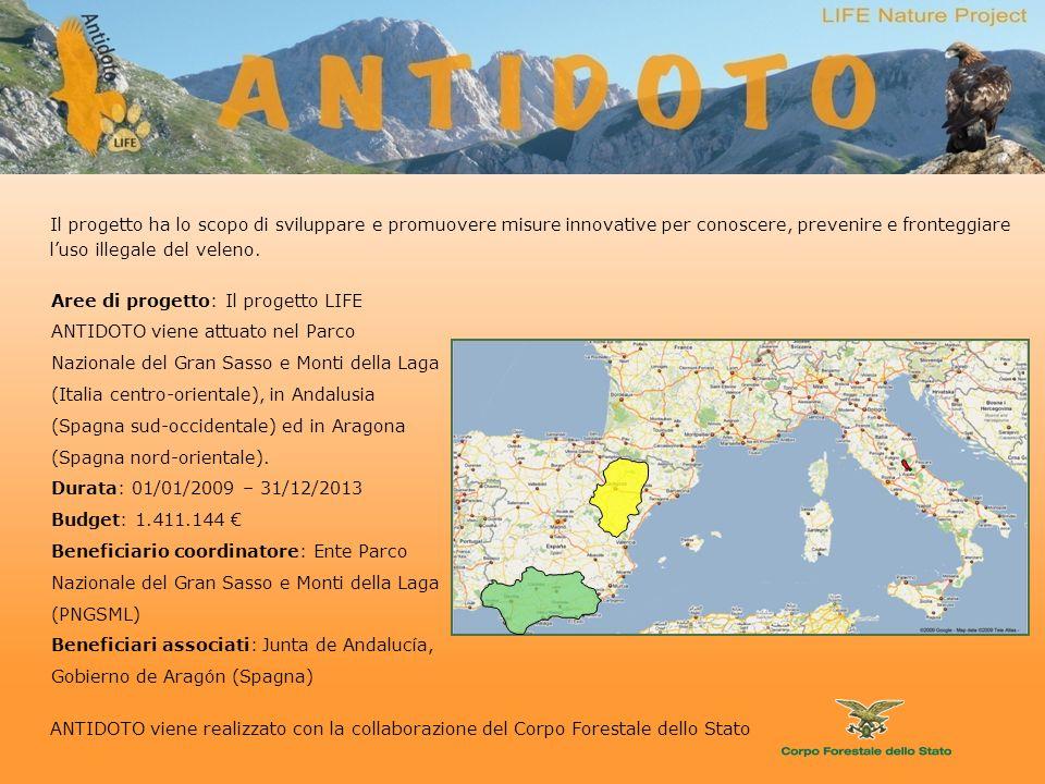 Aree di progetto: Il progetto LIFE ANTIDOTO viene attuato nel Parco Nazionale del Gran Sasso e Monti della Laga (Italia centro-orientale), in Andalusia (Spagna sud-occidentale) ed in Aragona (Spagna nord-orientale).