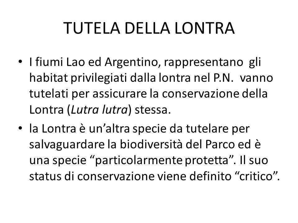 TUTELA DELLA LONTRA I fiumi Lao ed Argentino, rappresentano gli habitat privilegiati dalla lontra nel P.N.