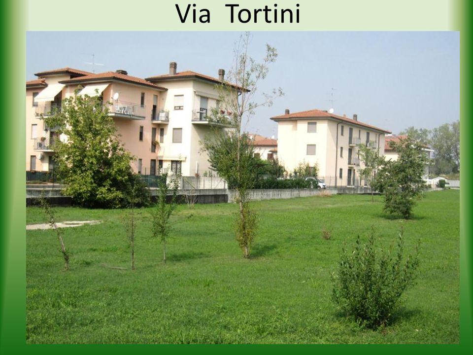 Via Tortini