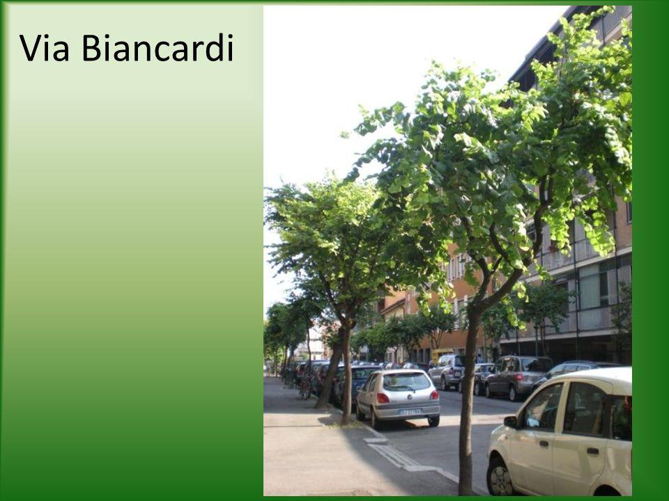 Via Biancardi
