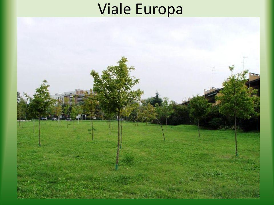 Viale Europa