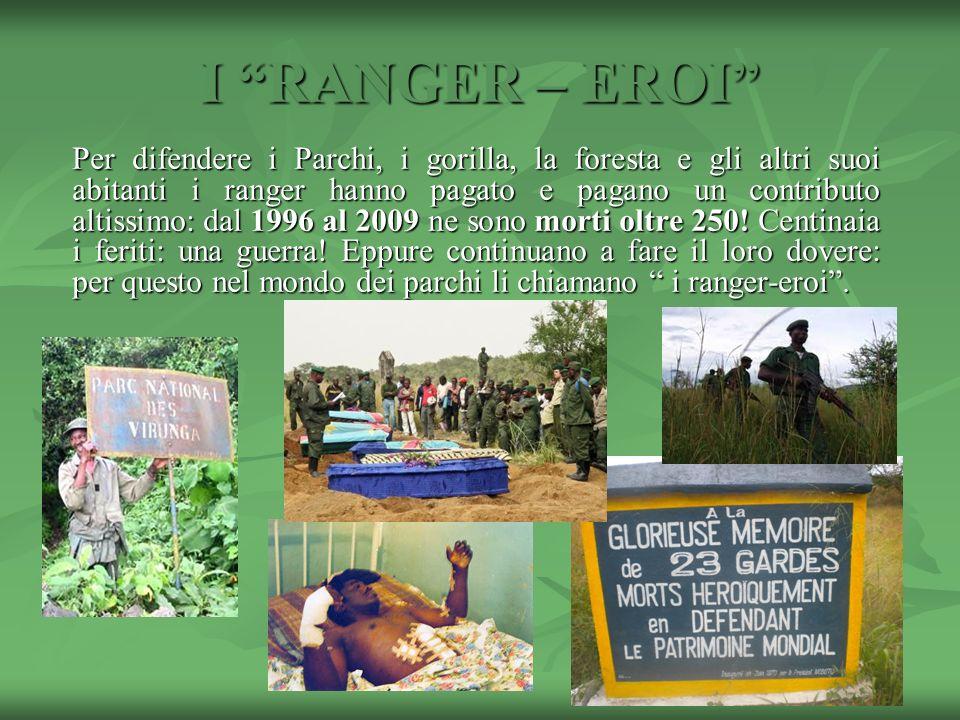 I RANGER – EROI Per difendere i Parchi, i gorilla, la foresta e gli altri suoi abitanti i ranger hanno pagato e pagano un contributo altissimo: dal 19