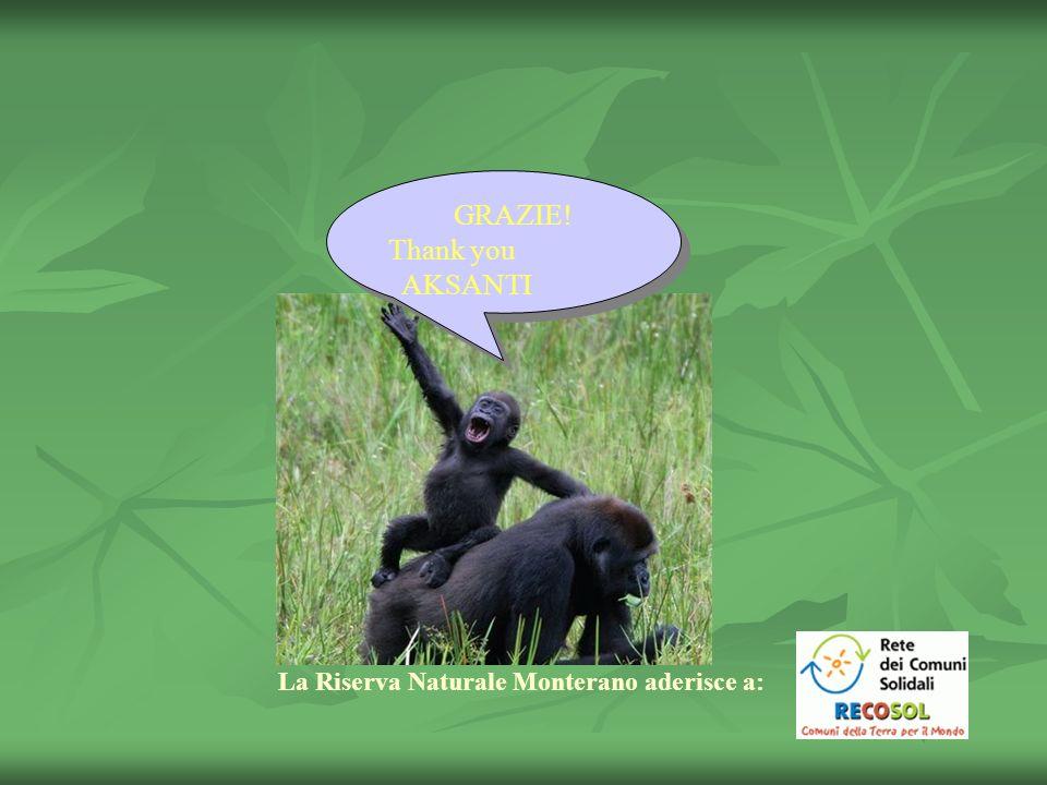 GRAZIE! Thank you AKSANTI GRAZIE! Thank you AKSANTI La Riserva Naturale Monterano aderisce a: