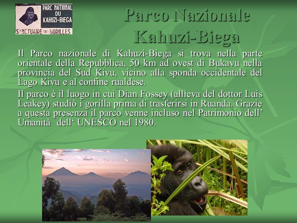 Il Parco nazionale di Kahuzi-Biega si trova nella parte orientale della Repubblica, 50 km ad ovest di Bukavu nella provincia del Sud Kivu, vicino alla