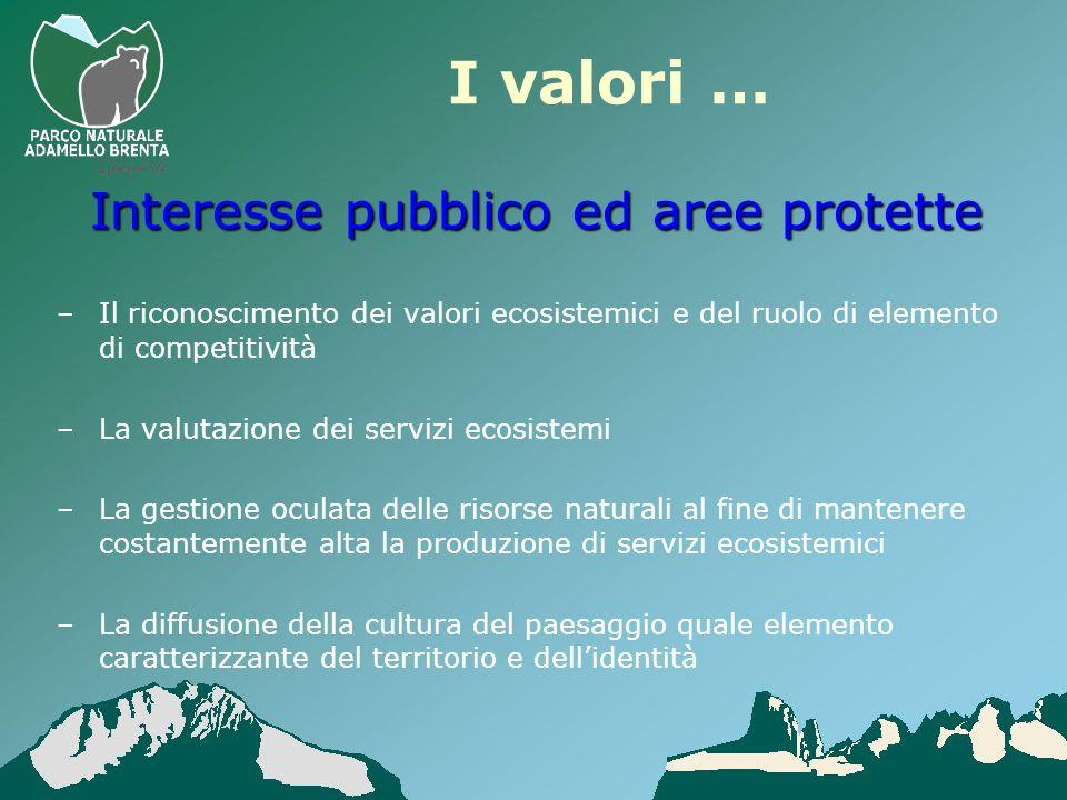 I valori … –Il riconoscimento dei valori ecosistemici e del ruolo di elemento di competitività –La valutazione dei servizi ecosistemi –La gestione ocu