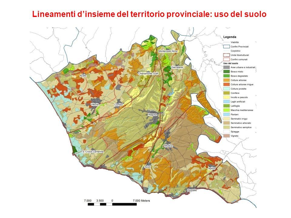 Lineamenti dinsieme del territorio provinciale: uso del suolo