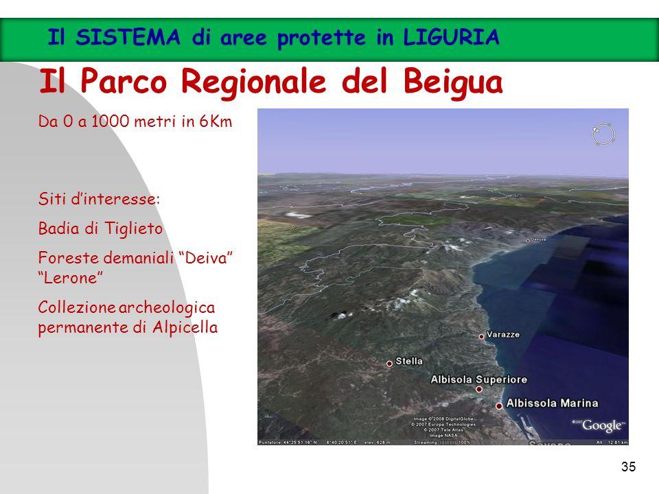 35 Il SISTEMA di aree protette in LIGURIA Il Parco Regionale del Beigua Da 0 a 1000 metri in 6Km Siti dinteresse: Badia di Tiglieto Foreste demaniali