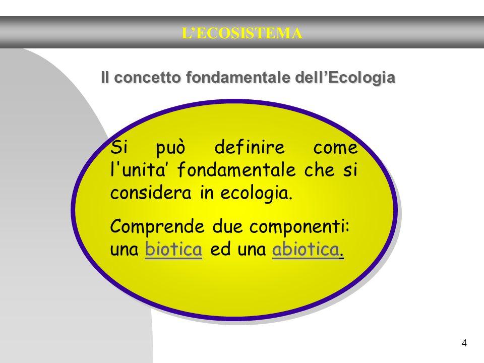 4 LECOSISTEMA Il concetto fondamentale dellEcologia Si può definire come l'unita fondamentale che si considera in ecologia. bioticaabiotica. Comprende