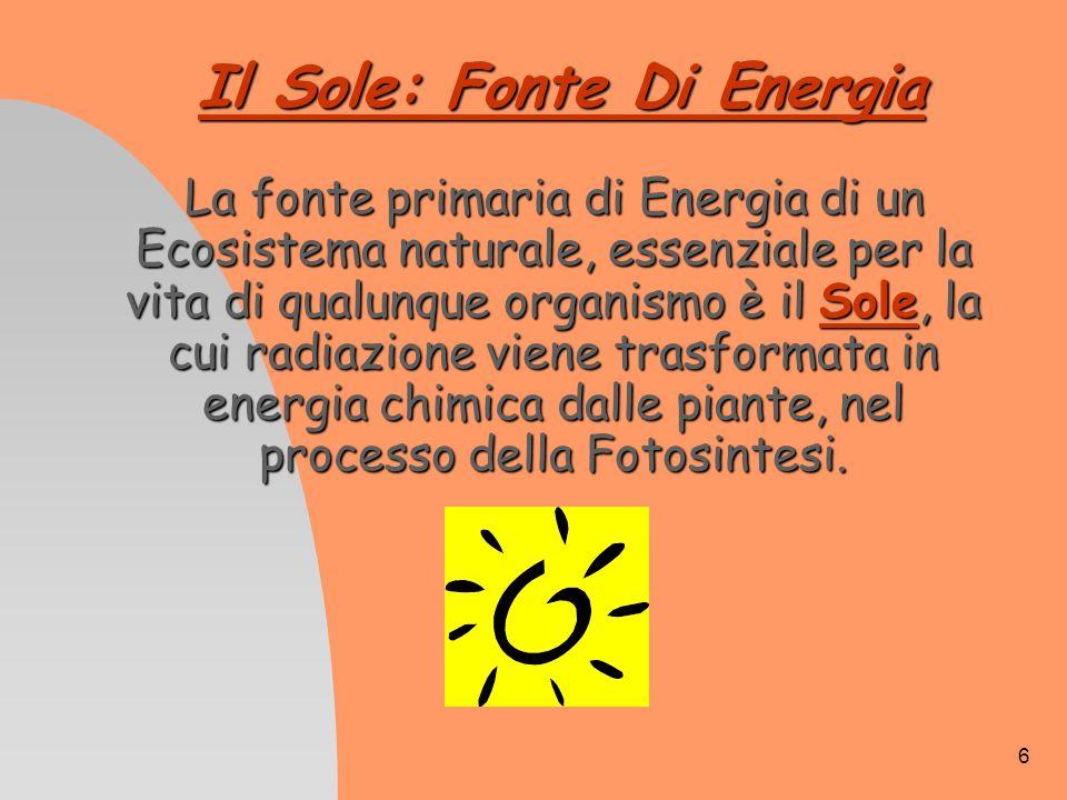 6 Il Sole: Fonte Di Energia La fonte primaria di Energia di un Ecosistema naturale, essenziale per la vita di qualunque organismo è il Sole, la cui ra