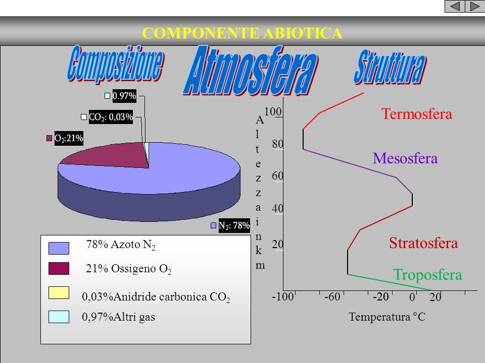 COMPONENTE ABIOTICA Temperatura °C AltezzainkmAltezzainkm 20 40 60 80 100 -100-60-20 0 20 Troposfera Stratosfera Mesosfera Termosfera 78% Azoto N 2 21