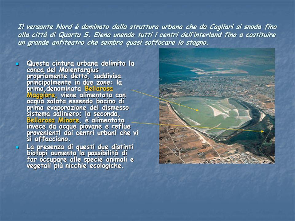 Il versante Nord è dominato dalla struttura urbana che da Cagliari si snoda fino alla città di Quartu S. Elena unendo tutti i centri dellinterland fin
