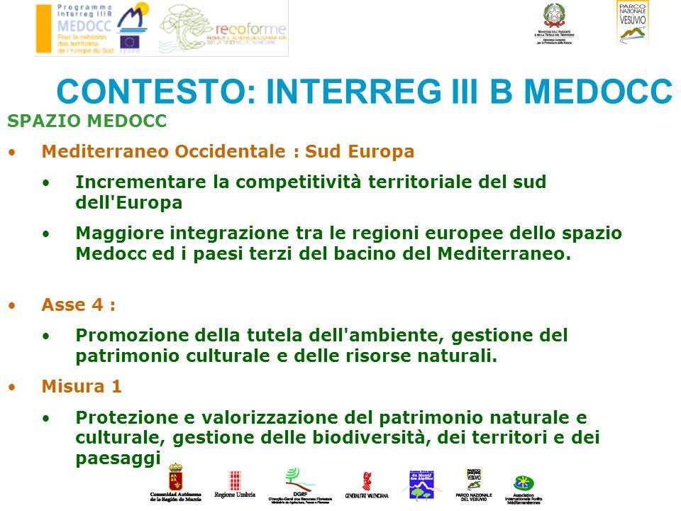 CONTESTO: INTERREG III B MEDOCC SPAZIO MEDOCC Mediterraneo Occidentale : Sud Europa Incrementare la competitività territoriale del sud dell'Europa Mag