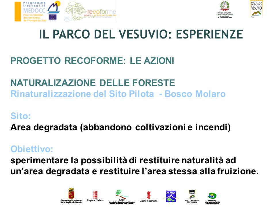 PROGETTO RECOFORME: LE AZIONI NATURALIZAZIONE DELLE FORESTE Rinaturalizzazione del Sito Pilota - Bosco Molaro Sito: Area degradata (abbandono coltivaz