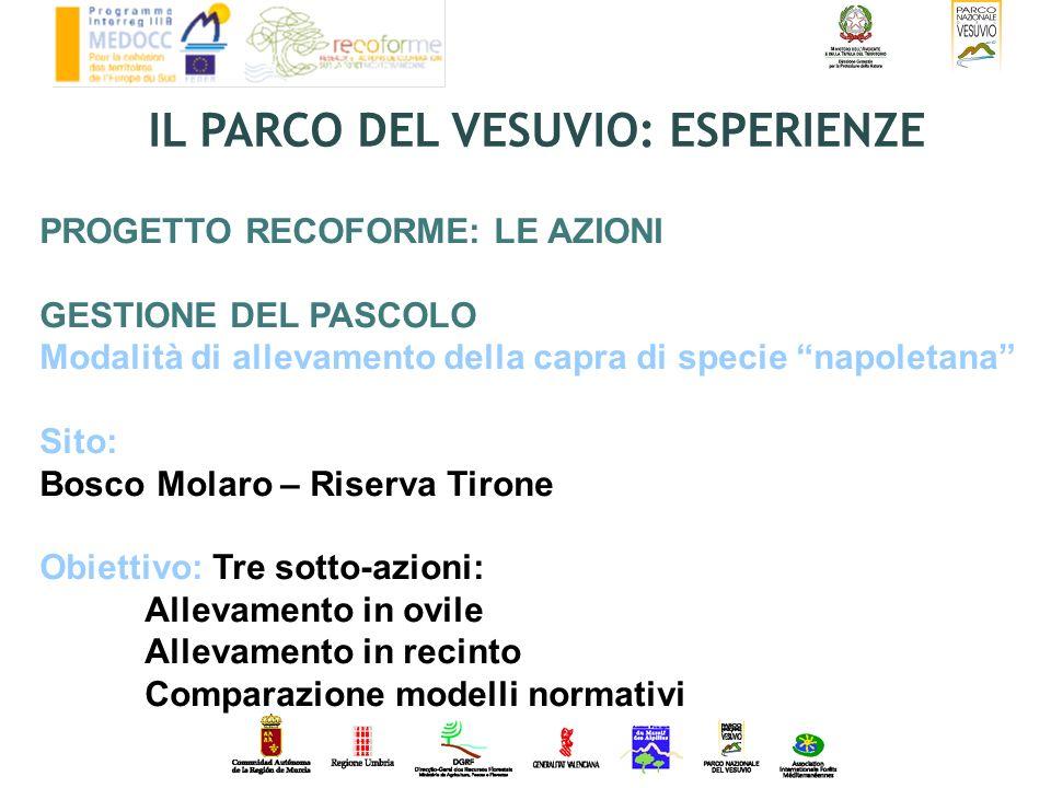 PROGETTO RECOFORME: LE AZIONI GESTIONE DEL PASCOLO Modalità di allevamento della capra di specie napoletana Sito: Bosco Molaro – Riserva Tirone Obiett