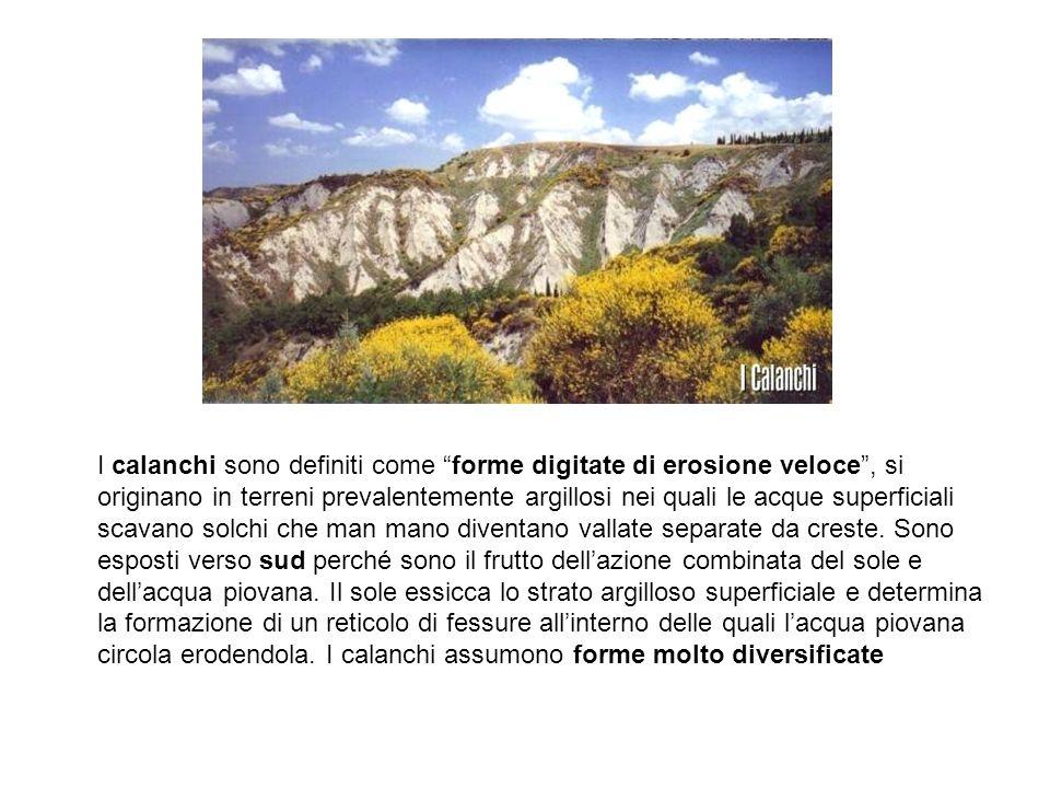 I calanchi sono definiti come forme digitate di erosione veloce, si originano in terreni prevalentemente argillosi nei quali le acque superficiali sca