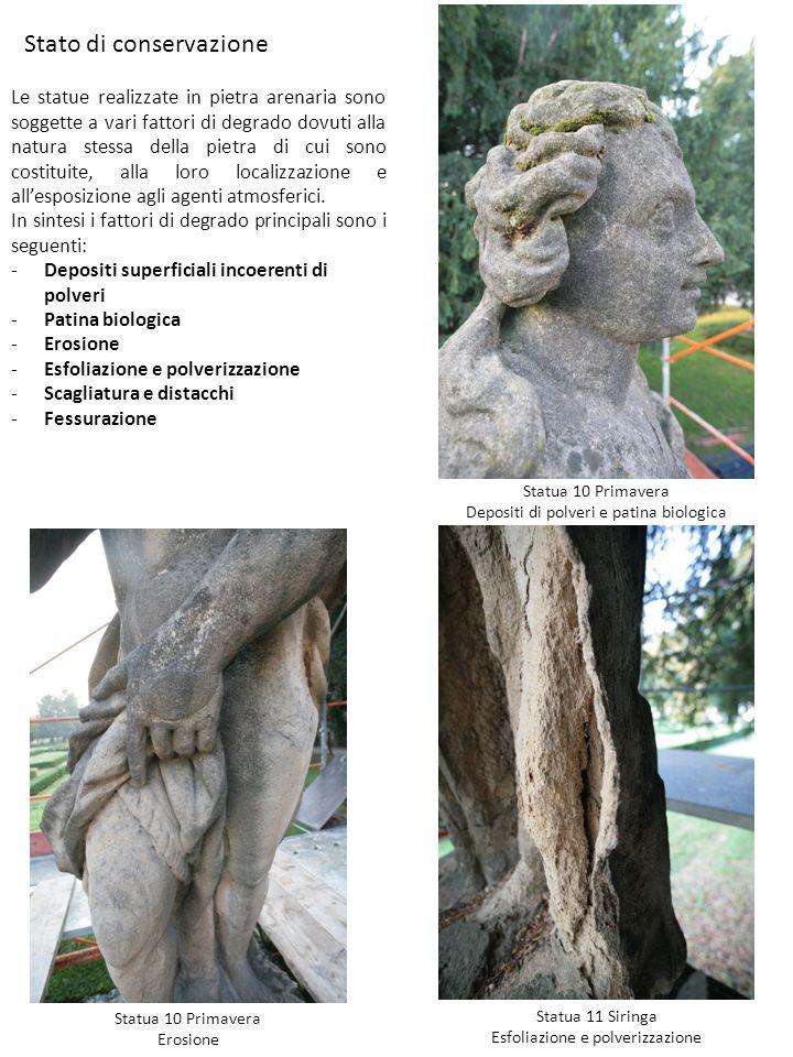 Stato di conservazione Le statue realizzate in pietra arenaria sono soggette a vari fattori di degrado dovuti alla natura stessa della pietra di cui s