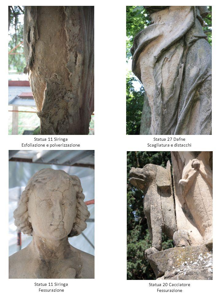 Statua 11 Siringa Esfoliazione e polverizzazione Statua 11 Siringa Fessurazione Statua 20 Cacciatore Fessurazione Statua 27 Dafne Scagliatura e distac