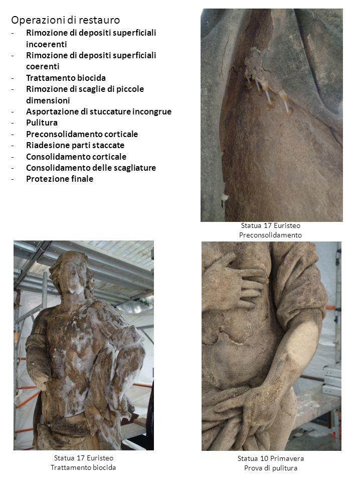 Operazioni di restauro -Rimozione di depositi superficiali incoerenti -Rimozione di depositi superficiali coerenti -Trattamento biocida -Rimozione di